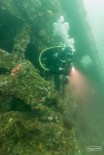 Wreck of the Avalon