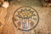 Tree of life mosaic in Madaba