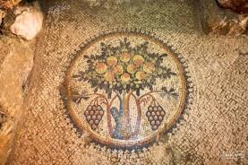 Tree of life mosaic in Madaba
